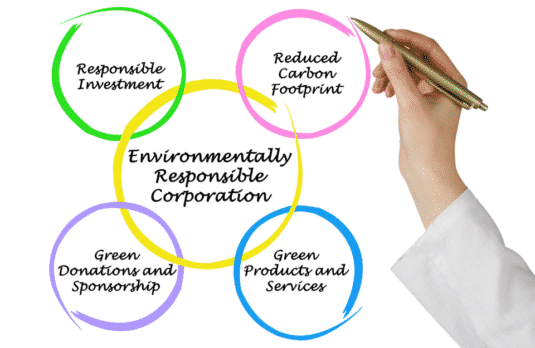 Corporations Rise To The Environmental Challenge And Invest In Green Energy?
